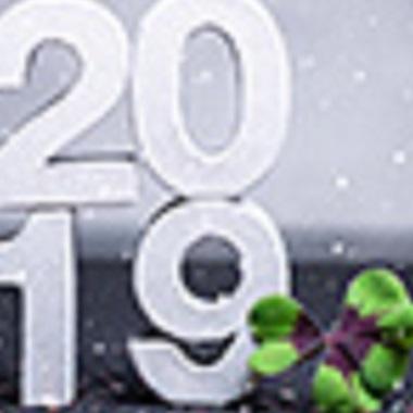 Was gibt es 2019 Neues bei Steuern und Sozialversicherung?